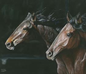 cavalli-da-corsa-dipinto-sassari-alghero